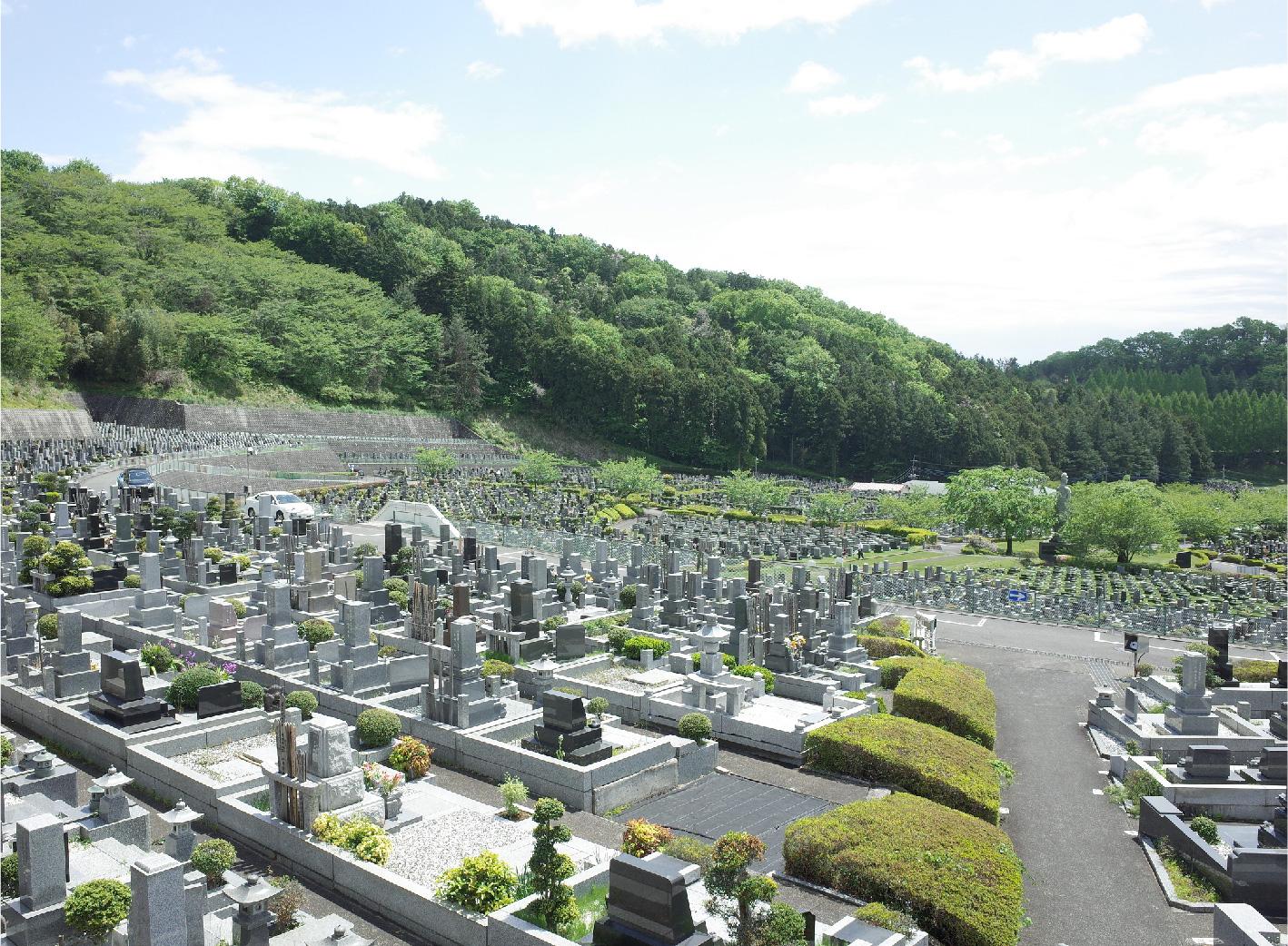 墓地の現地調査